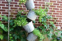 Giardino / Idee di design.
