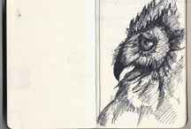 illustration- dessin