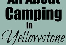 Yellowstone / by Amy Greving
