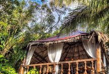 Maruba Resort Jungle Spa / Design inspiration board for international, Belizean resort and spa.