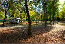 Camping Relax / Reaxing at Marina di Venezia Camping CavallinoTreporti