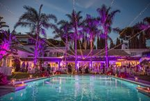 Dream weddings and extraordinary events / Personalized service and extraordinary facilities make us the ideal spot to host your next special event, wedding or celebration. http://www.marbellaclub.com/events/default-en.html / by Marbella Club Hotel