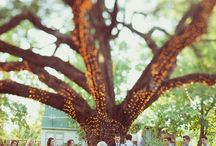 A Whimsical Wedding
