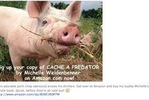 Cache a Predator, A Novel