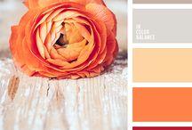 Farbe:  Orange und Gelb / Farben, die zusammenpassen: Wohnungseinrichtung, Kleidung etc.