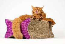 Kratzmöbel / Kratzmöbel aus Wellpappe cat furniture , cat scratchers griffoirs à chats, Kratzbäume