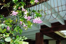 Fences & Gates: Upcycle Repurpose Recycle Reuse DIY