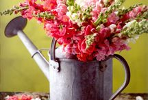 Rustic Arrangements / What's not to love about these whimsical displays.