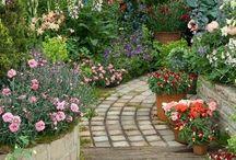 garden ideas / patio
