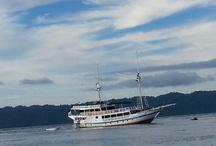Trip Raja Ampat Papua