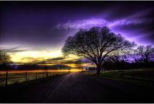 Purple Haze / Colours I love / by Michelle Sergeant