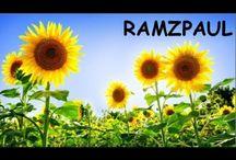 Ramzpaul - Sociopolitical