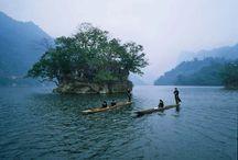 Nationalparks im Norden Vietnams / Im Norden Vietnam gibt es viele schöne Nationalparks, die jährlich viele in- und ausländische Reisenden anlocken. In diesen Parks versammeln sich vielfältige von seltsamen und reichvollen Pflanzen und Tieren.