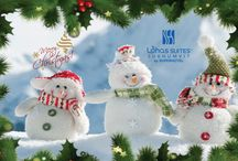 Merry Christmas! / We're wishing you all a healthful and joyful holiday season.  Wishing you and your family a Merry Christmas!