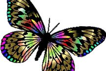 kelebek resimleri