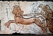 Egypt b.c. / by josephine lucas
