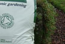Let Your Green Garden Grow