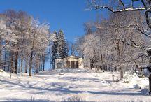 Discover Silesia - Odkrywaj z nami Dolny Śląsk !!! / Dolny Śląsk to region o największym nasyceniu obiektów zabytkowych w Polsce, pięknych krajobrazów i bogatej historii.