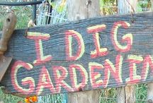 work garden project / by Brooke Crenshaw
