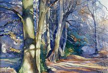 beautiful Avenue of trees