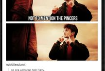 Potter Head. / All things Harry Potter.