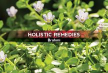 Holistic Remedies