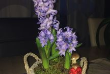 Virágok, flovers