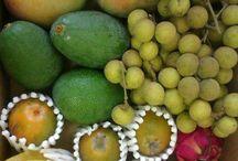 IHSM La Mayora CSIC-UMA / Frutas tropicales y hortalizas, producidas en La Mayora