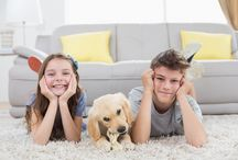 Beauty of Carpet / Carpet: the canvas of a room design, the warm cushion underfoot, the setting of family game night, the basis of a healthy home.