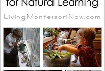 Montessori&Waldorf