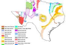 Texas Water / by Montalbosan ;)