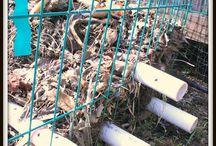 Composting / Garbage
