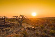 """Afrikas schönste Sundowner-Spots / """"Bei einem Sundowner handelt es sich um ein alkoholisches Getränk, das zum Sonnenuntergang getrunken wird"""" … aber wer schon einmal in Afrika war kennt ihn – diesen magischen Moment, wenn die Sonne im Meer oder über der Savanne glutrot versinkt und man dies in geselliger Runde mit einem Drink genießt. Der Sundowner gehört einfach zu jeder Safari!"""