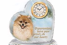 Pomeranian Dog Lover's Gifts / Special and inexpensive t-shirts, gifts, ornaments, and stocking stuffers for Pomeranian lovers. http://www.yuckles.com/gifts-pomeraniansdogs.html