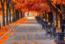 Autumn feel