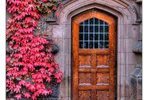 Only Doors