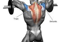 Rücken..Übungen