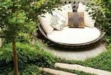 garden: oasis