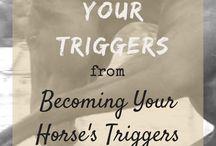 Equestrian Mentality & Wellness