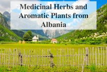 Medicinal Herbs and Aromatic Plants from Albania / Albania is well known for being the world's largest exporter of sage and one of the leading exporters of medicinal herbs and spices in Europe. Albania's Mediterranean climate and traditional agriculture methods is a ideal environment for more than 250 medicinal and aromatic plants.