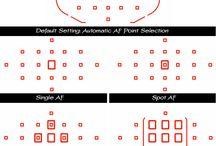 Canon 7D Info