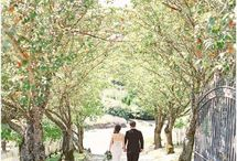 Woodinville Wedding Venues / Some of our favorite wedding venues in Woodinville, WA - about 30-45 minutes from Seattle