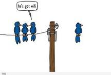Funny / by Christina Delle Walborn