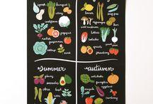 Seasons and elements