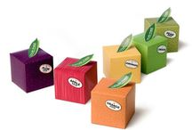 Favriote Package Design / by Galen Wong