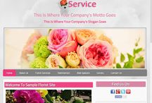 My Supernova Website Templates / Samples of web pages we specialize in!
