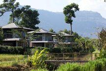 The River Resort, Champasak
