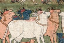 pichwai cows