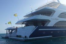 CROCIERA IN COLLABORAZIONE CON MANTA TRUST 2014 / Albatros Top Boat con Manta Trust - itinerario speciale per fare  snorkeling, immersioni e scoprire e conoscere  a fondo le Meravigliose Mante delle Maldive.