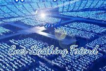 Super Junior Fans